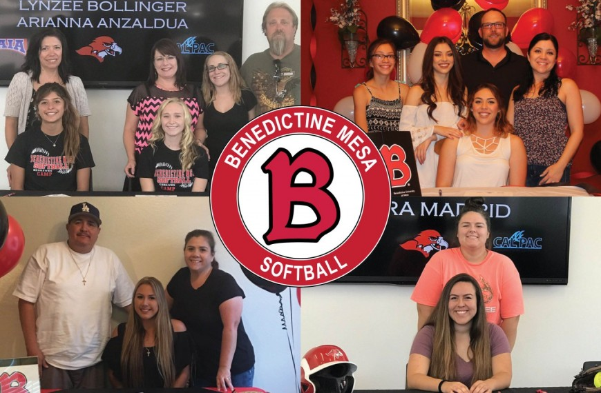 Photo for Softball adds 15 players for 2017-18 season